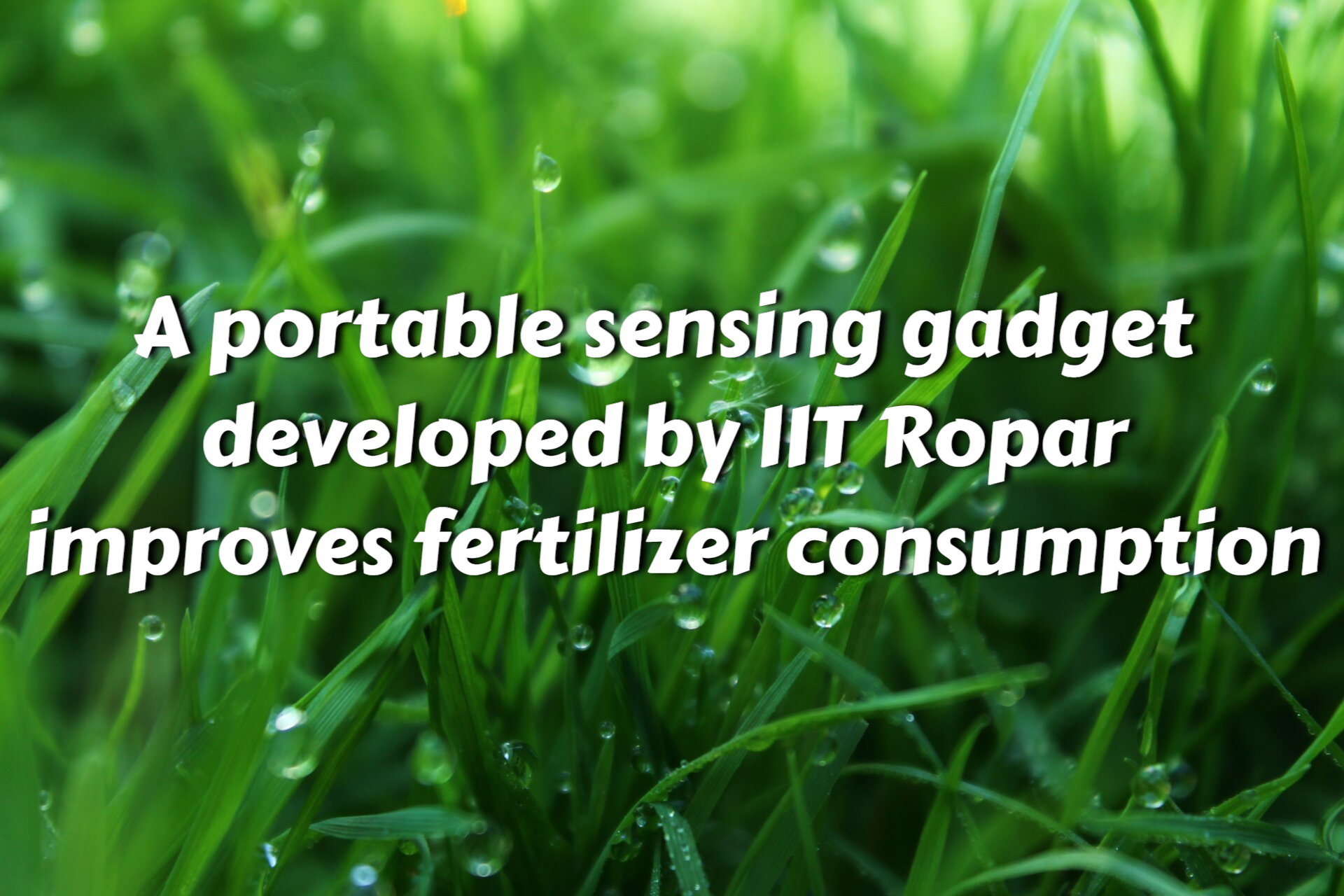 IIT Ropar comes up with a device that optimizes fertilizer use by a portable sensing device